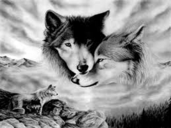 spirit-wolves-wolf-lovers-place-32285086-1335-1000